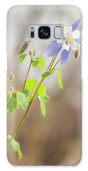 Aquilegia Galaxy Case - Columbine (aquilegia 'swan Blue And White') by Maria Mosolova/science Photo Library