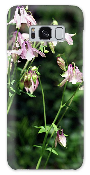 Aquilegia Galaxy Case - Columbine Flowers (aquilegia Skinneri) by Brian Gadsby/science Photo Library