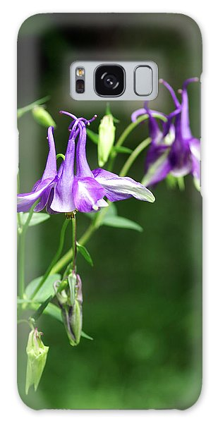 Aquilegia Galaxy Case - Columbine Flowers (aquilegia Yabeana) by Brian Gadsby/science Photo Library