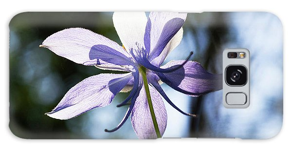 Aquilegia Galaxy Case - Columbine Wildflower, Colorado, Usa by Piperanne Worcester