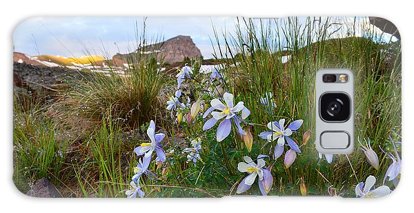 Columbines And Uncompahgre Peak Galaxy Case