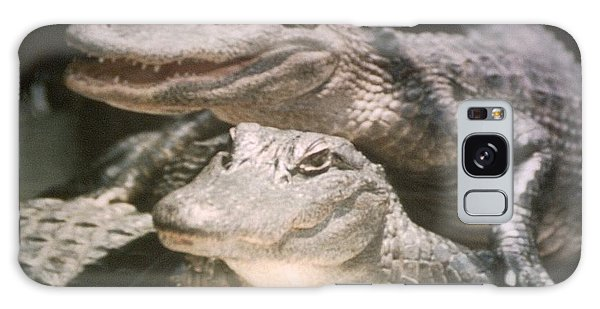 Florida Alligators Come Closer Galaxy Case by Belinda Lee
