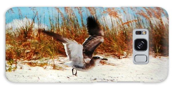 Windy Seagull Landing Galaxy Case by Belinda Lee