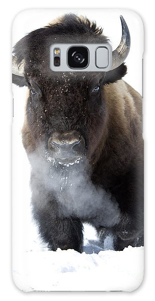 Bison Galaxy S8 Case - Coming Through by Deby Dixon