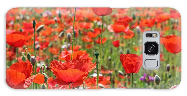 Commemorative Poppies Galaxy Case