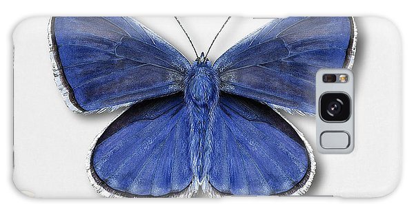 Common Blue Butterfly - Polyommatus Icarus Butterfly Naturalistic Painting - Nettersheim Eifel Galaxy Case