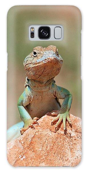 Common Collared Lizard 2 Galaxy Case by Elizabeth Budd