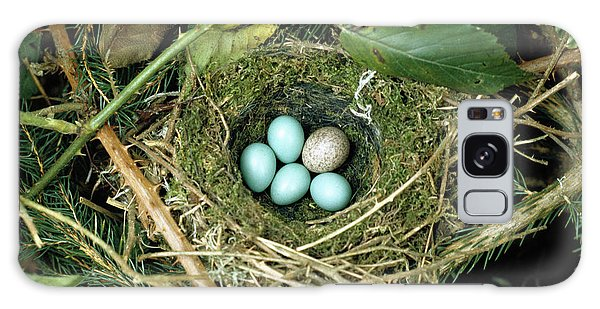 Common Cuckoo Cuculus Canorus Egg Laid Galaxy Case by Jean Hall