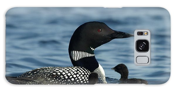 Common Loon Family Galaxy Case by James Peterson