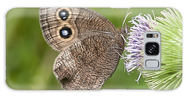 Common Wood-nymph On Thistle Galaxy Case