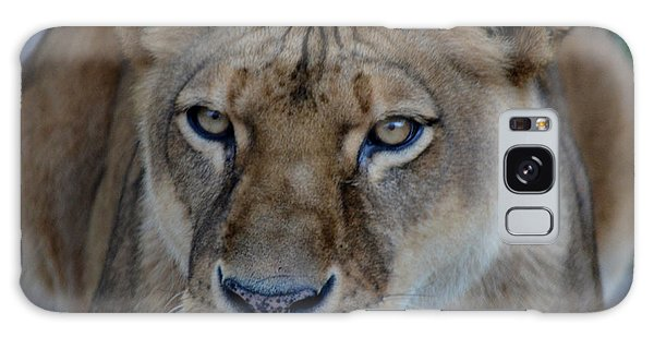 Concerned Lioness Galaxy Case