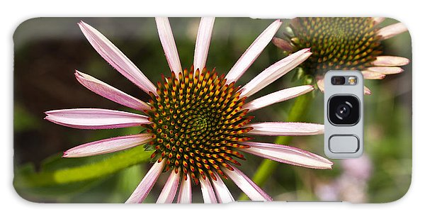 Cone Flower - 1 Galaxy Case