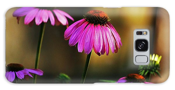 Cone Flower Shines... Galaxy Case by Al Fritz