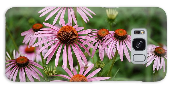 Cone Flowers Galaxy Case