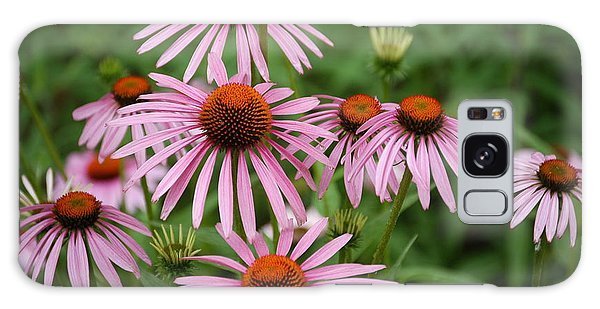 Cone Flowers Galaxy Case by Donald Williams