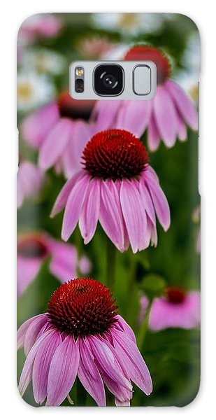 Coneflowers In Front Of Daisies Galaxy Case