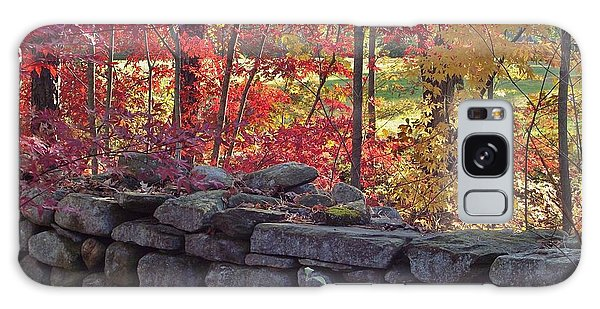 Connecticut Stone Walls Galaxy Case