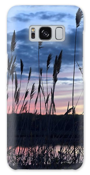 Connecticut Sunset With Reeds Series 4 Galaxy Case