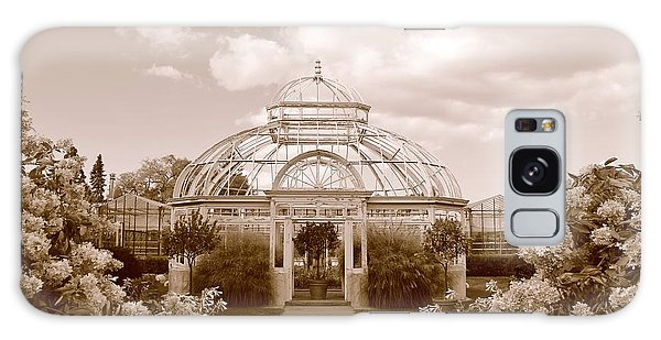 Conservatory- Sepia Galaxy Case