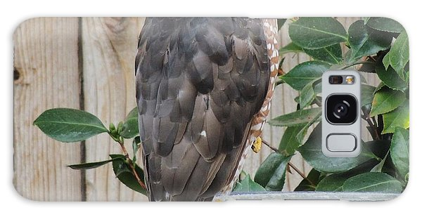 Coopers Hawk 1 Galaxy Case