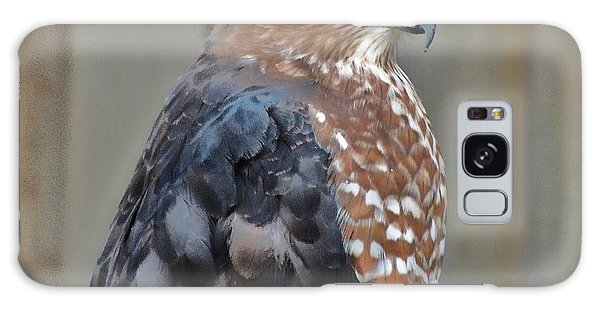 Coopers Hawk 3 Galaxy Case