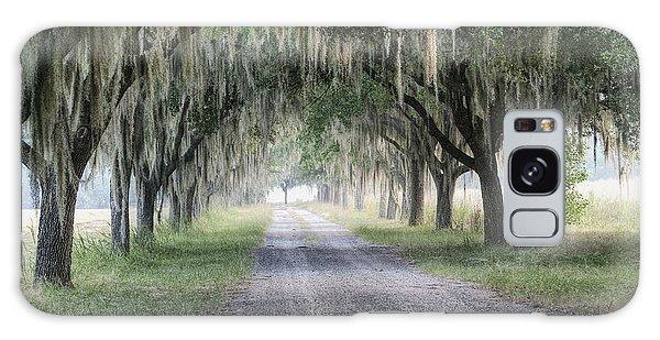 Coosaw Fog Avenue Of Oaks Galaxy Case