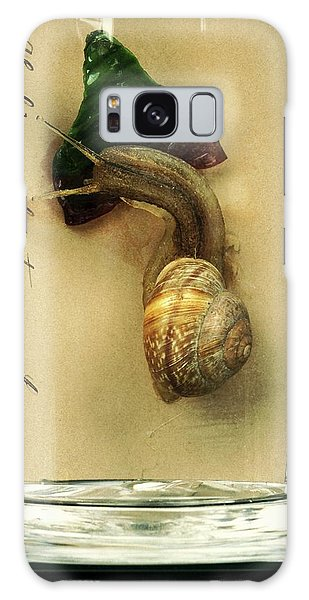 Anatomical Model Galaxy Case - Copse Snail by Ucl, Grant Museum Of Zoology