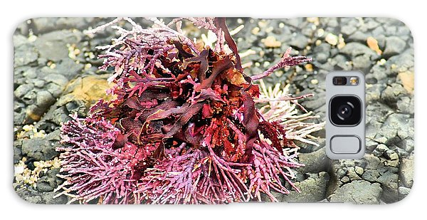 Coral I Galaxy Case by Bob Wall