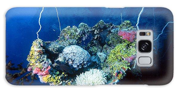 Corals On Ship Wreck Galaxy Case