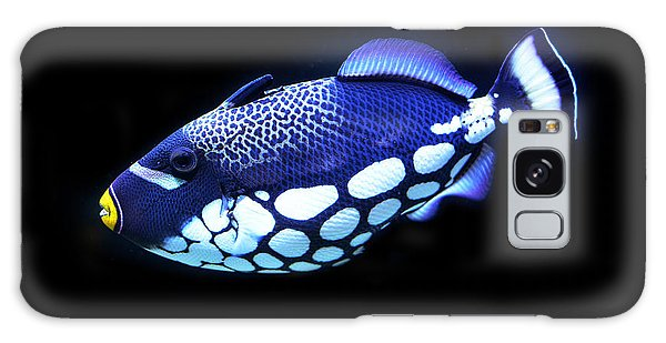 Corel Reef Beauty Galaxy Case
