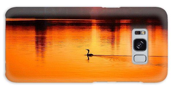 Cormorant At Sunset Galaxy Case by Pamela Blizzard