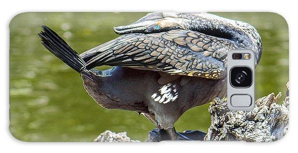 Cormorant Bending His Neck Backward Galaxy Case