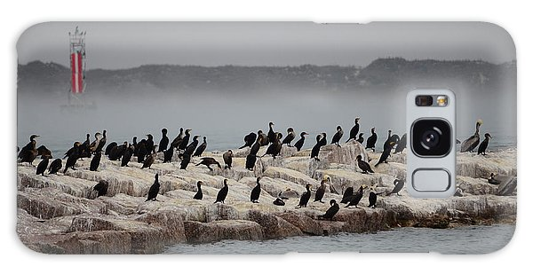 Cormorant Island Galaxy Case by Debra Martz
