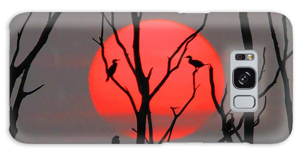 Cormorants At Sunrise Galaxy Case by Roger Becker