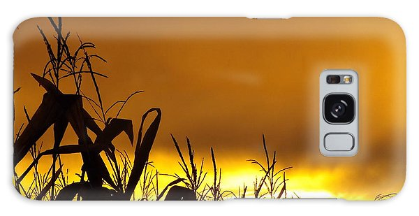 Corn At Sunset Galaxy Case