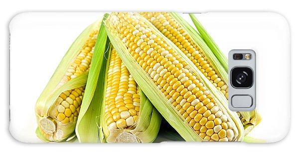 Corn Ears On White Background Galaxy S8 Case