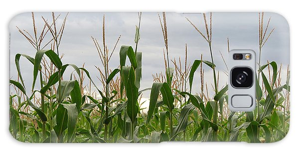 Corn Field Galaxy Case by Laurel Powell