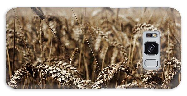 Corn Field Galaxy Case by Vicki Spindler