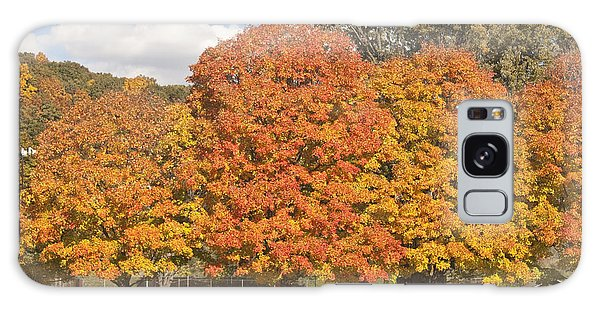 Corning Fall Foliage 1 Galaxy Case