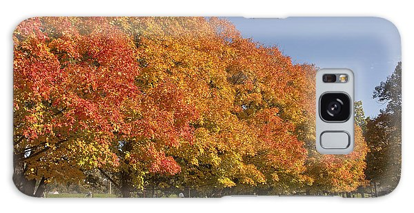 Corning Fall Foliage 2 Galaxy Case