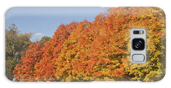 Corning Fall Foliage 3 Galaxy Case