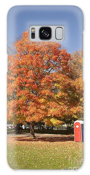 Corning Fall Foliage - 4 Galaxy Case