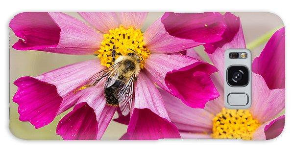 Cosmos And Bee Galaxy Case
