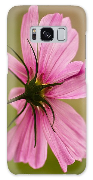 Cosmos In Pink Galaxy Case