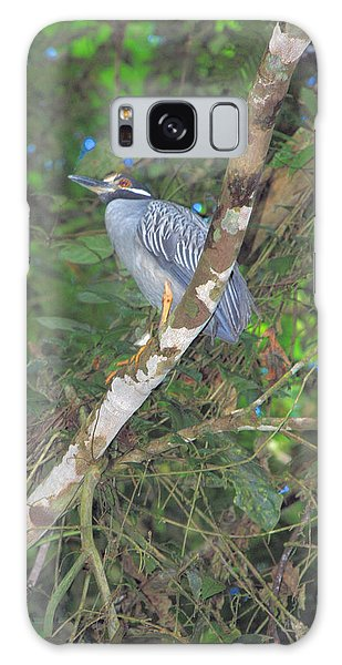 Costa Rica Heron Galaxy Case