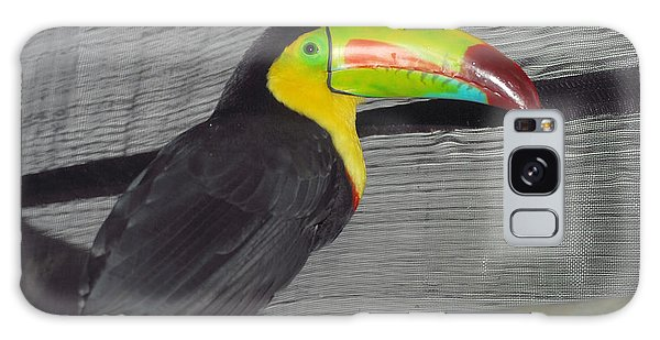 Costa Rican Toucan Galaxy Case