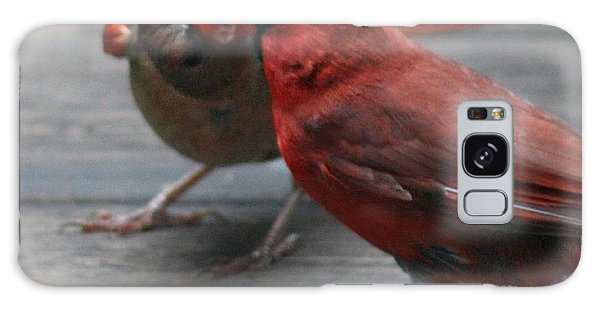 Courting Cardinal Galaxy Case