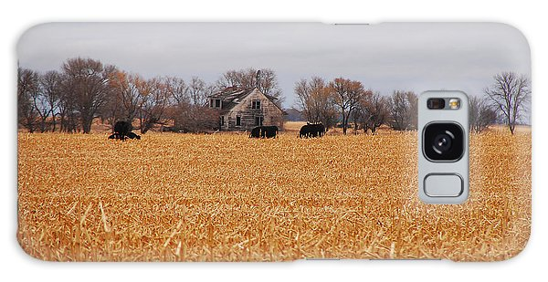 Cows In The Corn Galaxy Case