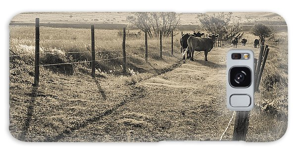 Cows In The Lane Galaxy Case