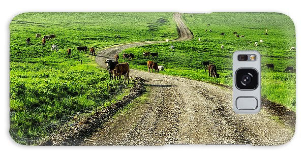 Cows On The Road Galaxy Case